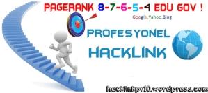 Profesyonel Hacklink Hizmetinde 5 Yıllık Tecrübe ve Birikim.